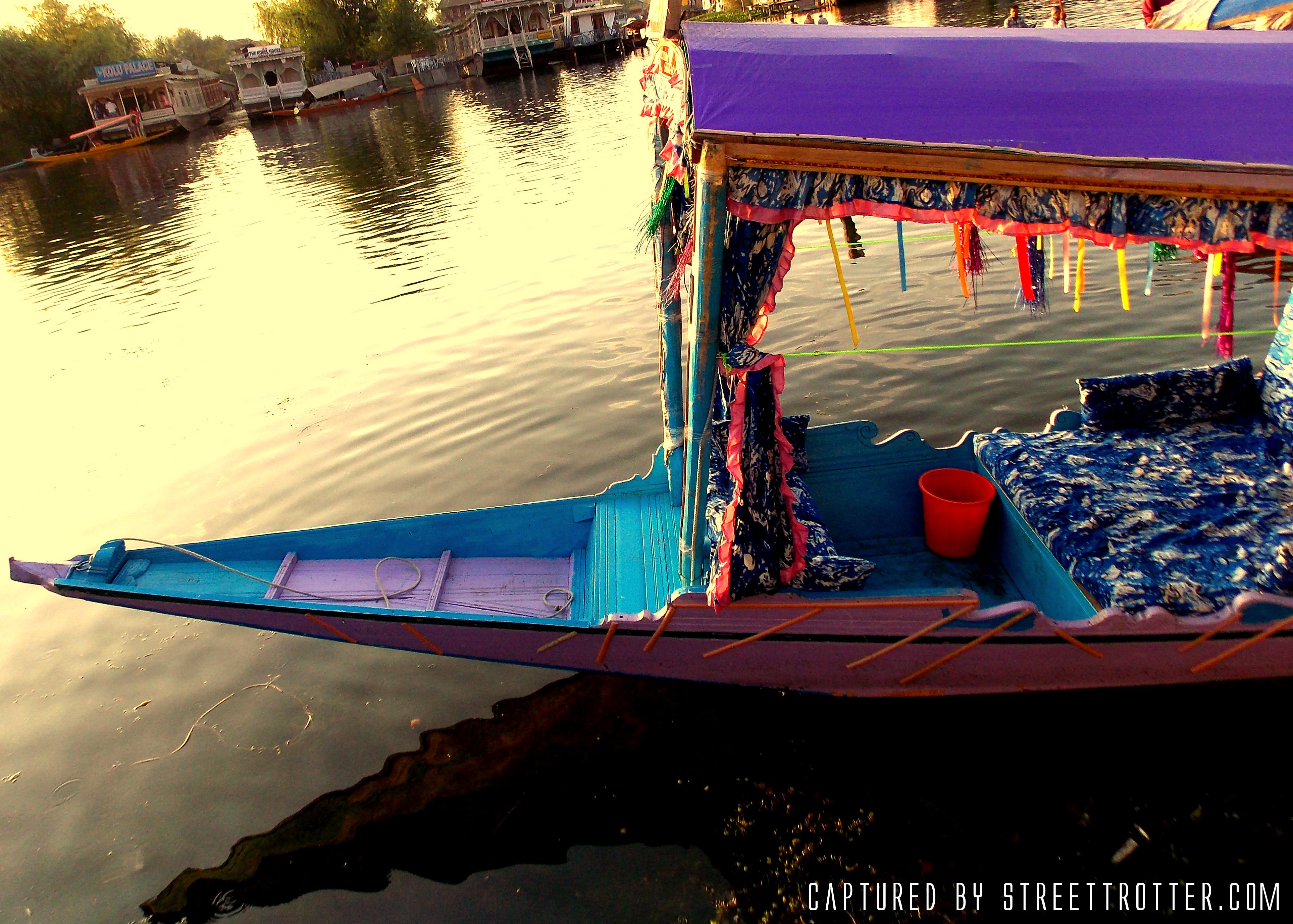 kashmir - srinagar - dal lake - shikara