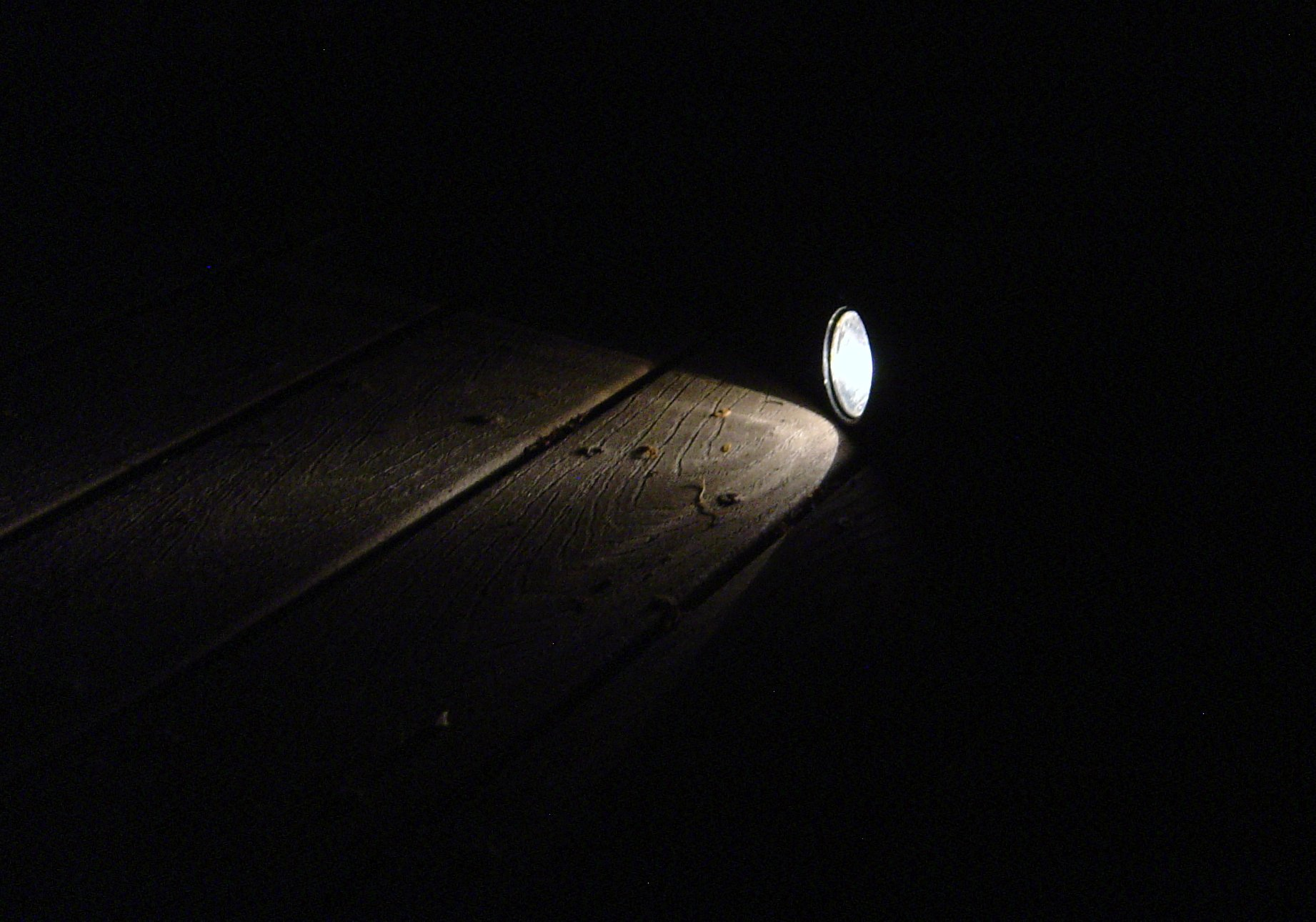 flashlight_in_the_dark