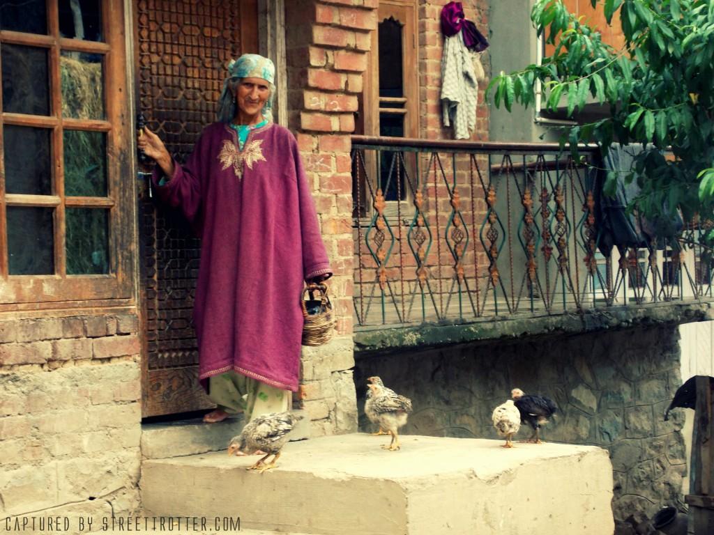 Kashmir-streettrotter