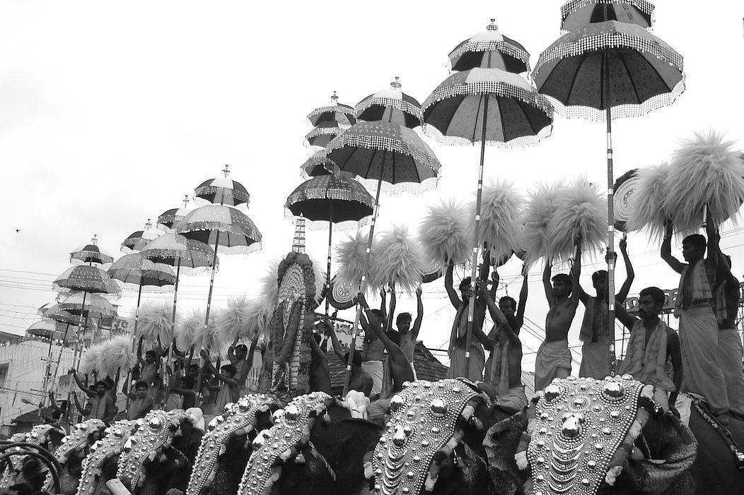 elephants and men with umbrella's during Thrissur Pooram
